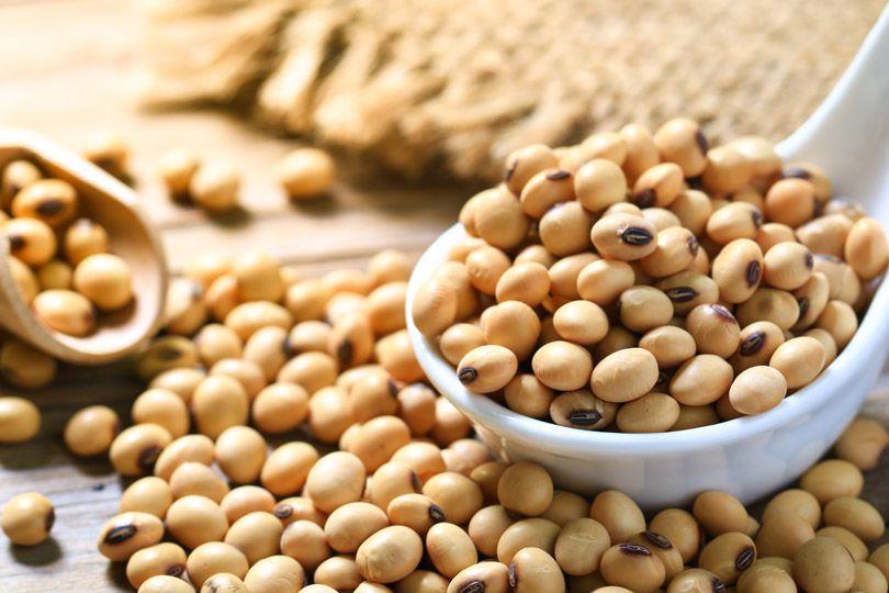 Sojabönor - viktig råvara för både livsmedel och hälsoprodukter.